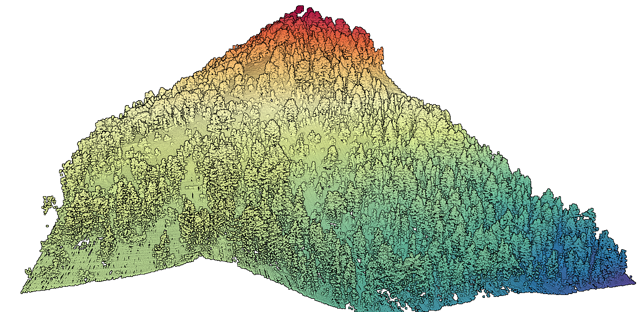 Elevation Point Cloud of Forested Slope Near Mammoth Lakes, CA