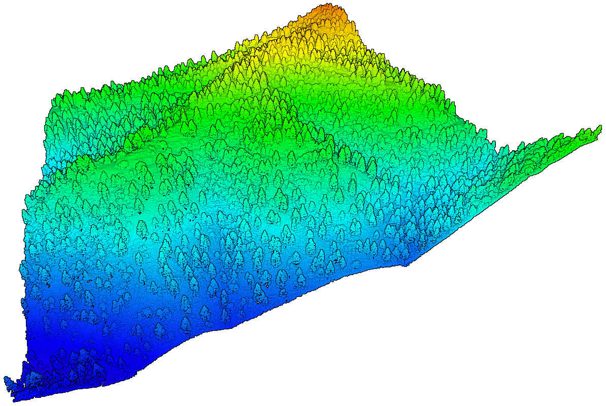 Elevation Point Cloud of Forested Slope in the Idaho Batholith
